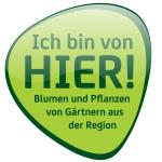 IBVH_Logo_web_300px-150x150 Kopie